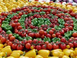 Gießener Formel Definition Der Vollwert Ernährung Ugb